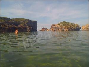 Foto fuera del agua